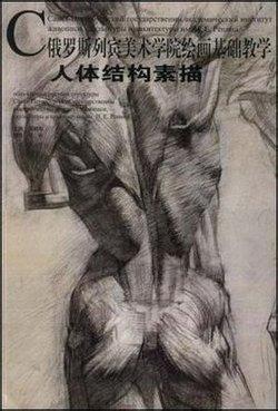 强调结构与人体素描间的关系