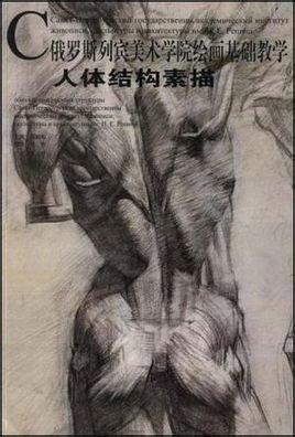 人体结构素描