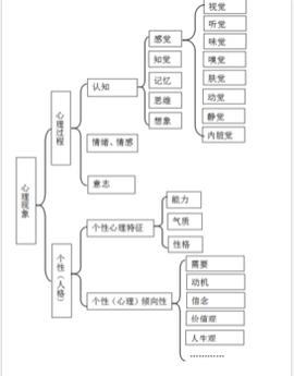 基本信息 中文名称 心理结构 分类                          意识