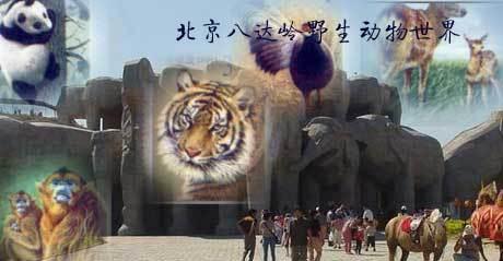 北京八达岭野生动物世界