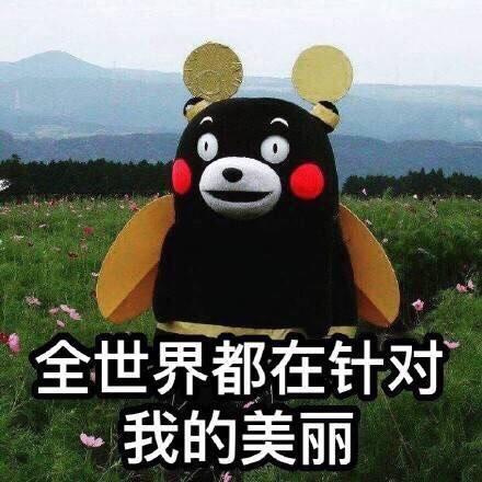 【斗图必备】行走的表情包熊本熊 - 360娱乐,你开心图片