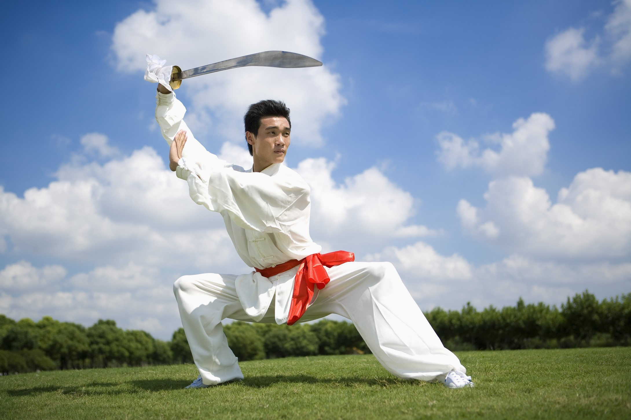 武术咏春矢量图