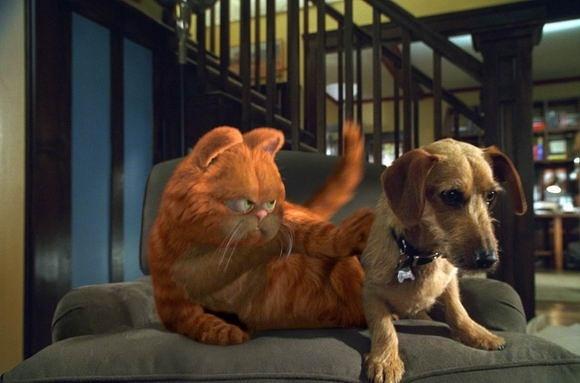 加菲猫和欧弟真人 图片合集