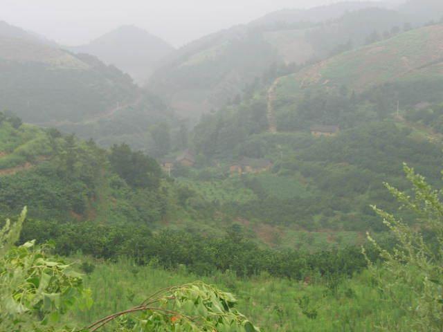 湖北省丹江口市土台乡岭西村一个叫王朝印的65岁农民,频频受到全国各