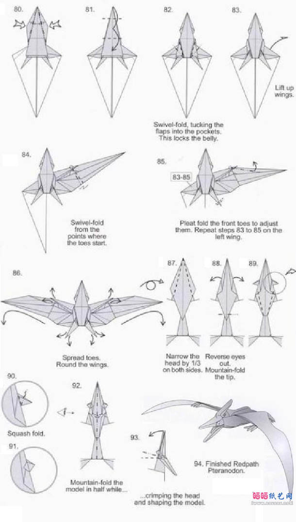 翼龙简笔画步骤画法