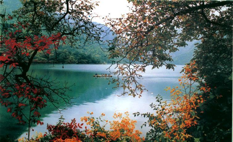 """贵清山风景区包括""""禅林桂月"""",""""断涧仙桥"""",""""洗眼清池"""",""""转树险道"""","""""""