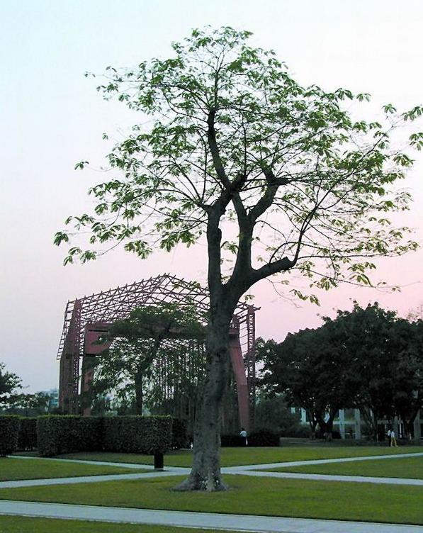 中山岐江公园