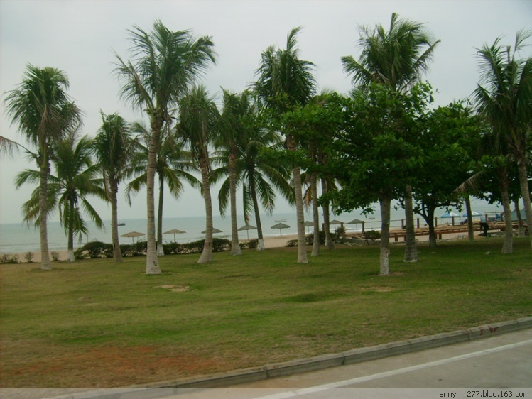 椰梦长廊 三亚椰梦长廊 呀诺达热带雨林景区 海南呀诺达雨林文化旅游