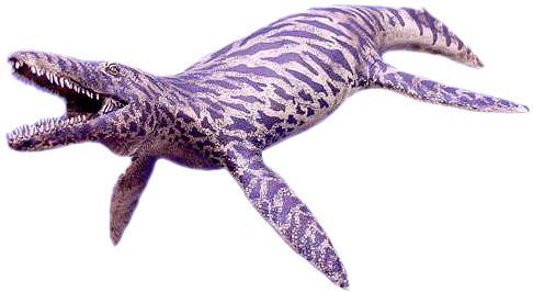 925物种的双孔类爬行动物存活在世界上